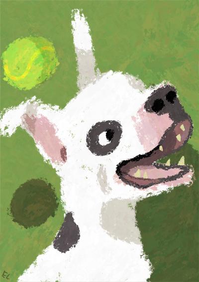 Bull-tyyppinen koira on innoissaan. Sen ohi lentää tennispallo.