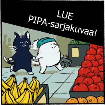 pipa1